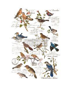 Redesign with prima deco transfer postal birds