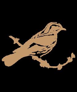 Sjabloon Dieren 01 - Vogel 20cmx20cm